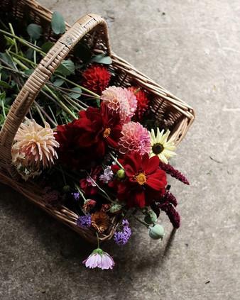 Basket of late summer beauties.jpg