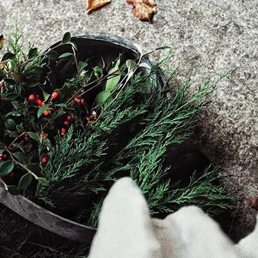 Winter Wreath Making - Saturday 11th Dec - £65