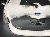 Snowy-leaf-400.jpg