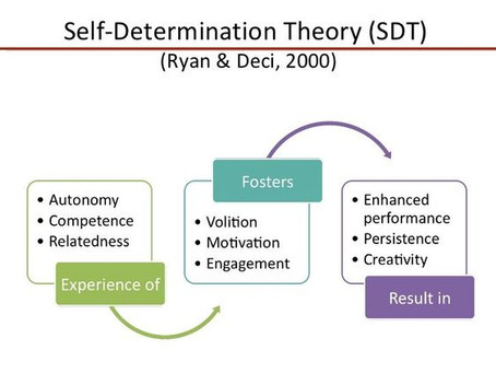 SDT: A Fascinating Theory about Motivation!