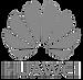 huawei-logo-communication-13_edited_edit
