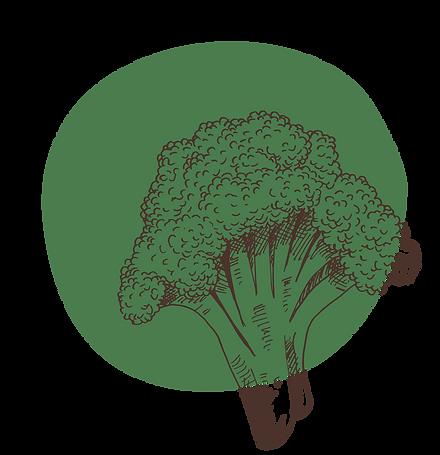 grun-biologische-groenten.png