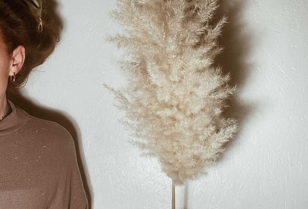 Extra Fluffy Pampas Plume