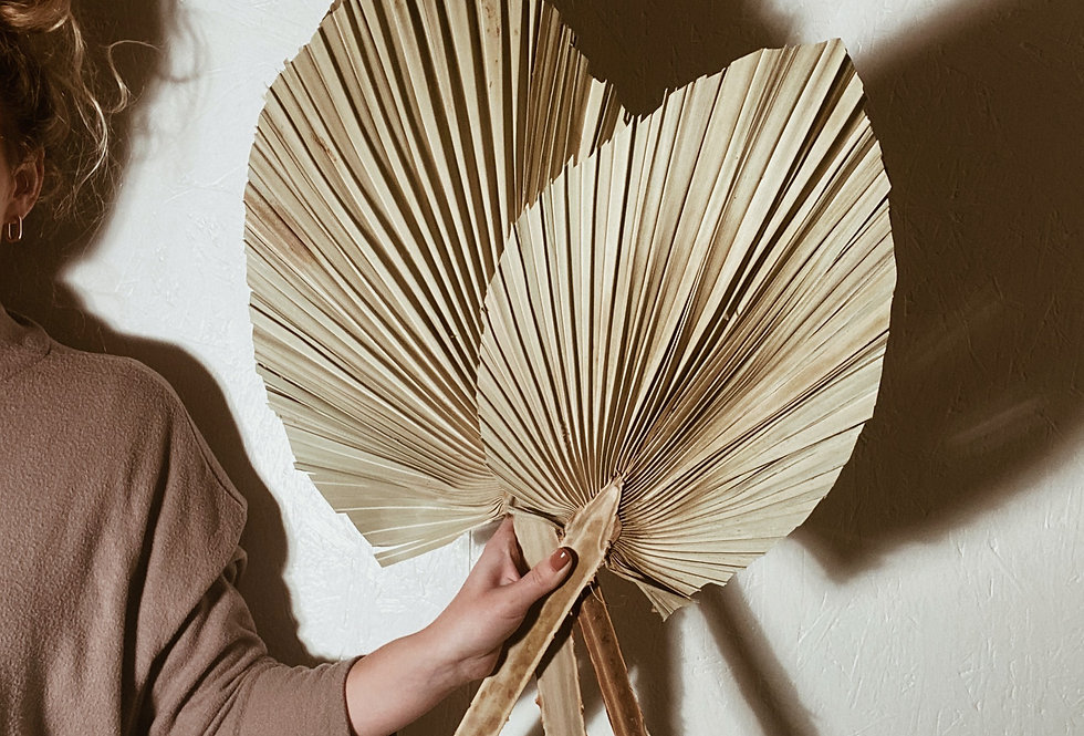 Large Spear Palm