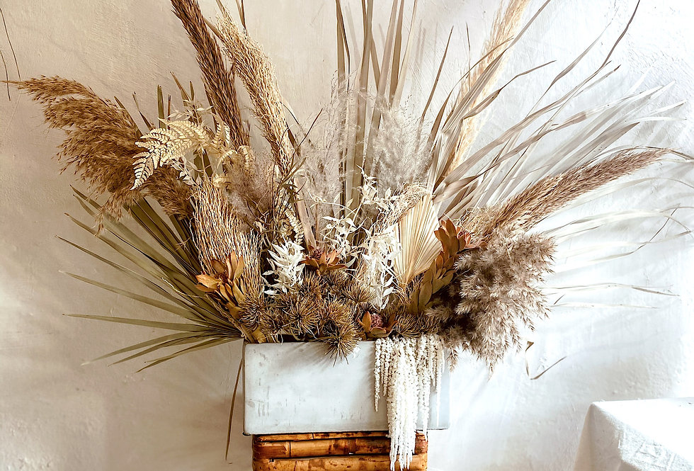 Palm Display