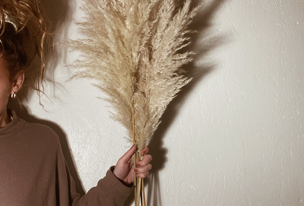 Pampas Plume Bunch