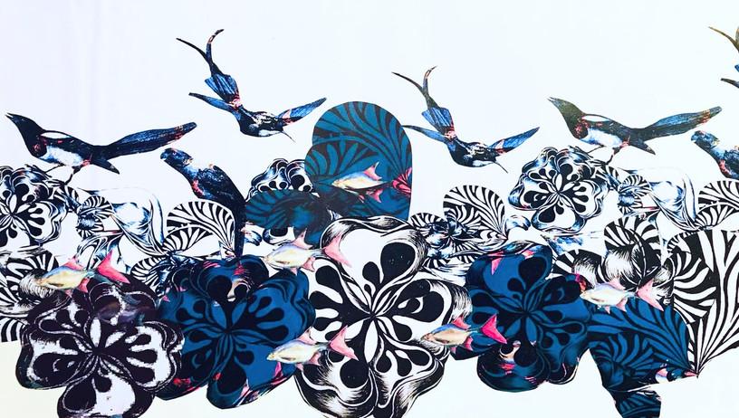 birds_collage_edited.jpg