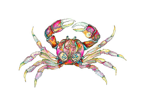 Pink Jewel Crab
