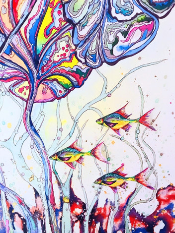 Lilly Fish_edited.jpg