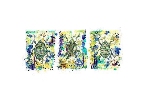Three Green Beatles