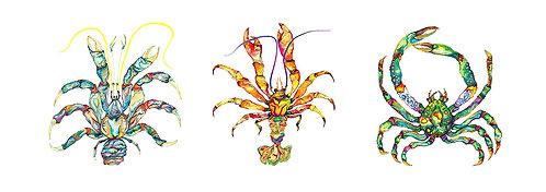 Three Jewel Lobsters