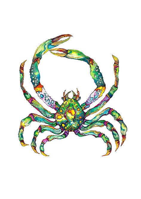 Green Jewel Crab