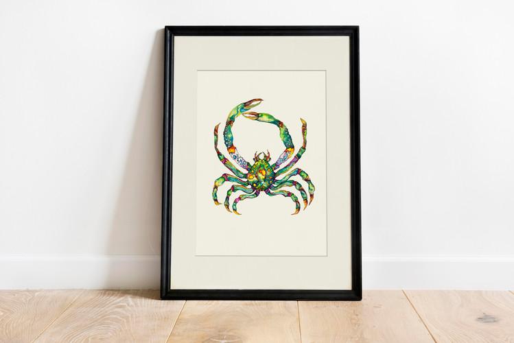 green crab m&f.jpg