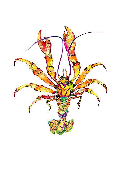 Orange Jewel Lobster