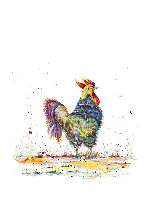 The Second Colourful Cockeral