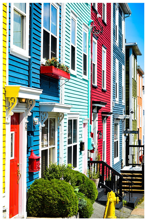 Colourful Neighbours
