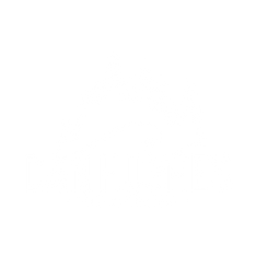 dhphotography_logo_white.png
