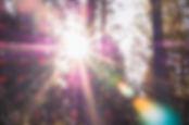 patrick-selin-391360-unsplash.jpg