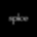 Spice-logo copy.png