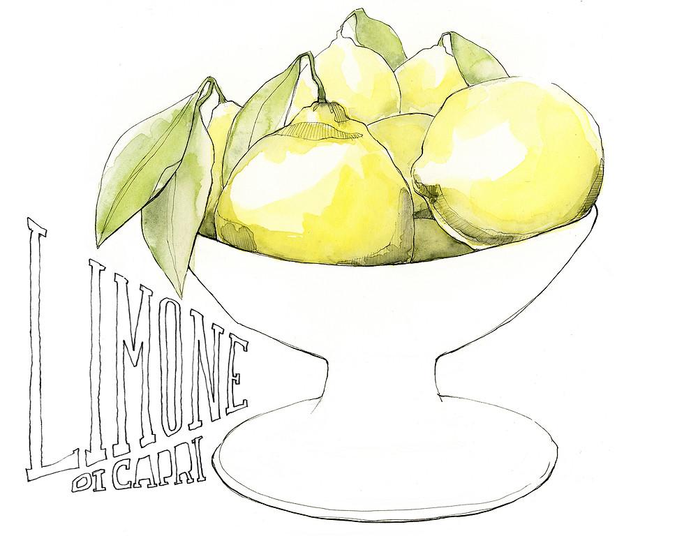 Blog Viaggi Italia Marcellooo.fr Capri Limone Illustrazione Jdan