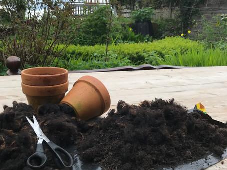 Wool in the Garden