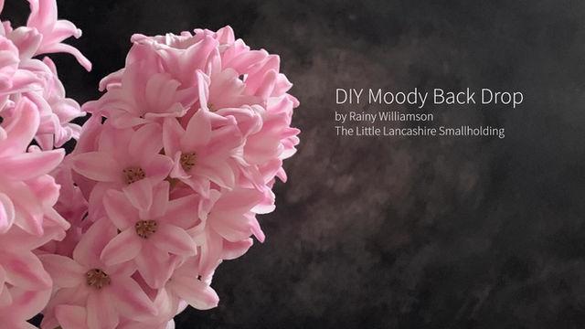 DIY Moody Back Drop