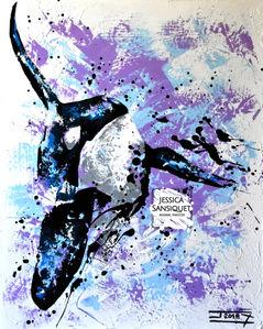 Orca gladiator