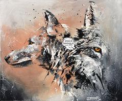 Faces de loups