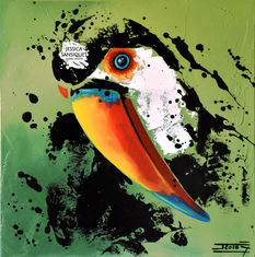 L'attendrissant toucan