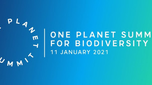 Minister Noonan attends 'One Planet Summit for Biodiversity'