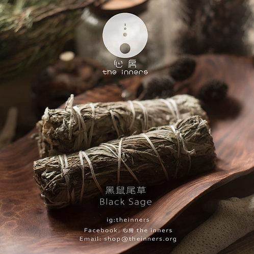 黑鼠尾草 |  Black Sage