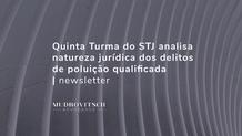 Quinta Turma do STJ analisa natureza jurídica dos delitos de poluição qualificada