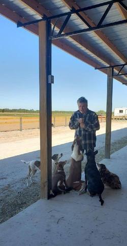 Randy & Dogs