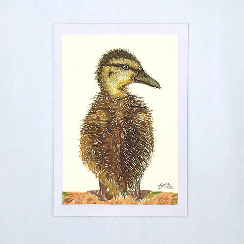 Watercolour Duckling