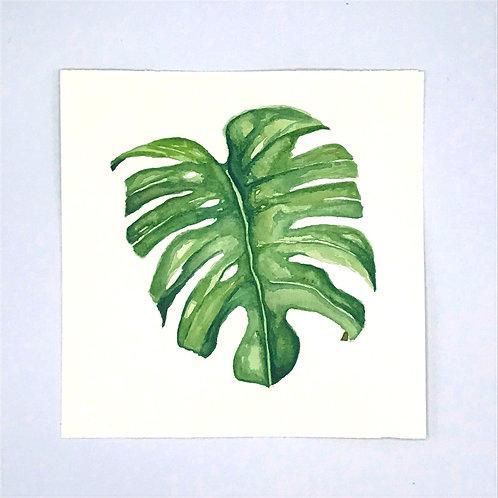 Leaf Watercolour