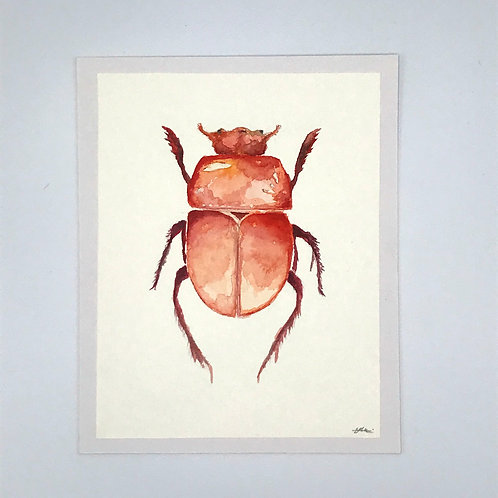 Red Beetle Watercolour