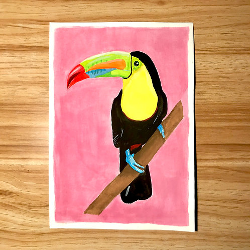 Terry the Toucan