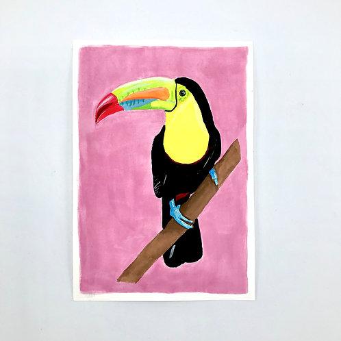Terry the Toucan