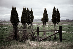 gate - Washington state