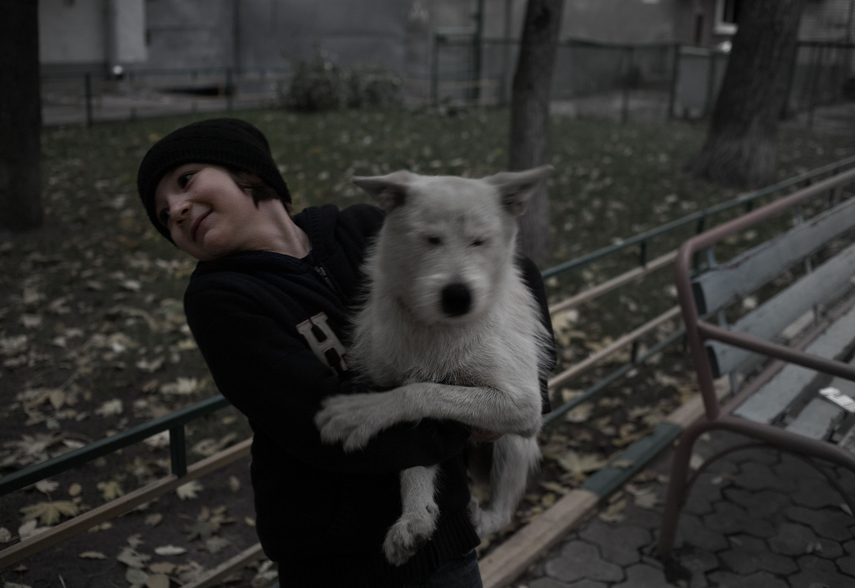 boy and dog - Moscow