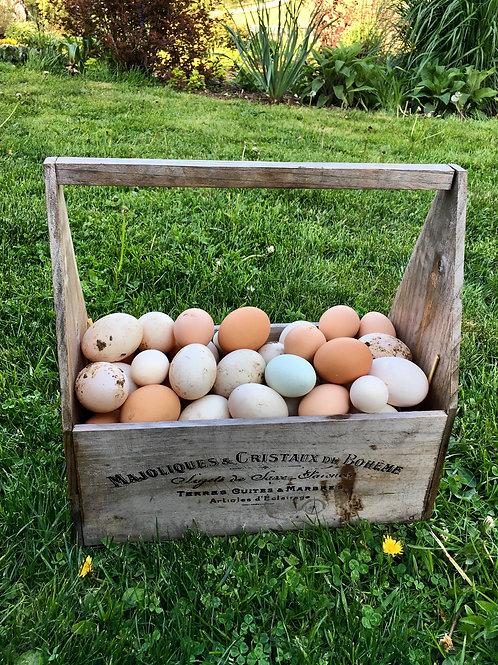 Farm Fresh Chicken Eggs (dozen)