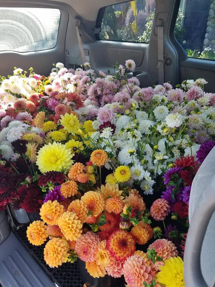 Flower Consult - Issaquah