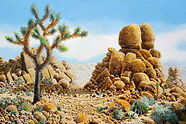 Joshua Tree 27 a painting by John Weidenhamer