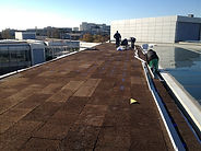 Insulation Roof with agglomerated cork