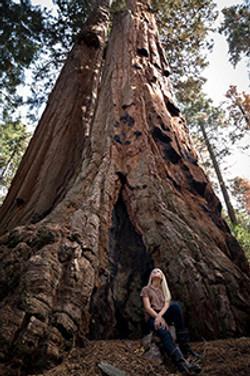 tree-girl-300
