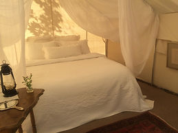 single bed tent pic.jpg