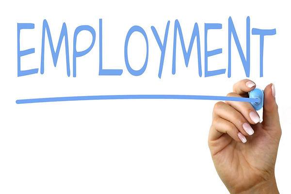 employment-986db6a697e14d789028b95e23d0a