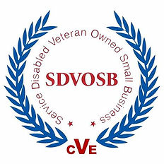 Disabled Veteran Owned Business.jpg
