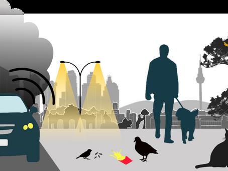 Contaminación y Biodiversidad: las Aves Urbanas Como Indicadores y Proveedores de Salud Humana