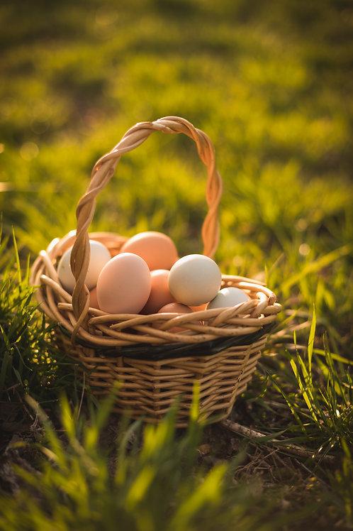 Eggs, 1 Dozen Pasture Raised